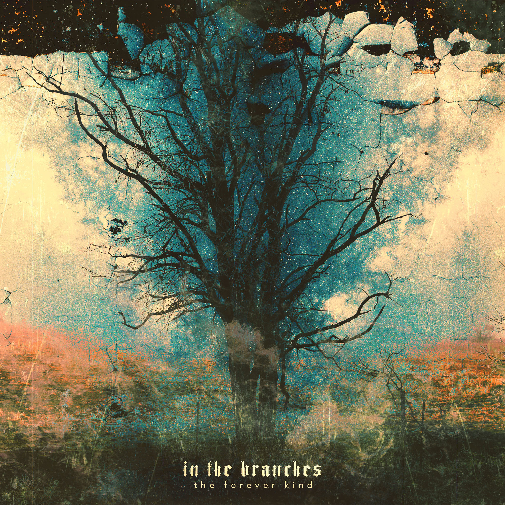 "In The Branches – ""The Forever Kind"" Out Now on Bandcamp"